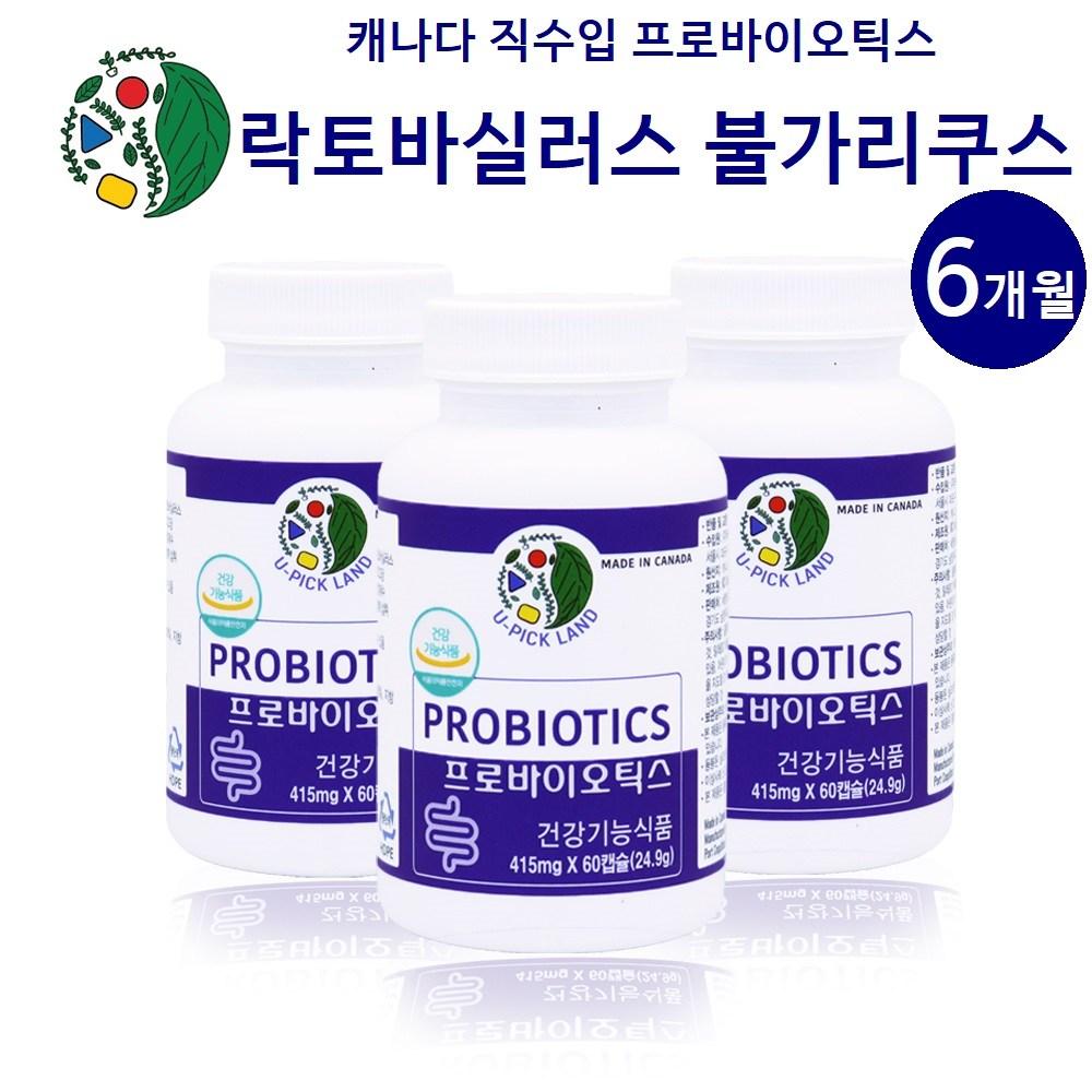 캐나다 불가리쿠스유산균 락토바실러스 불가리쿠스 프로바이오틱스 모유유산균 프롤린 가세리 17종 생유산균 식물성캡슐 프락토올리고당 메치니코프 복합균주 생존 효능, 3개, 60캡슐