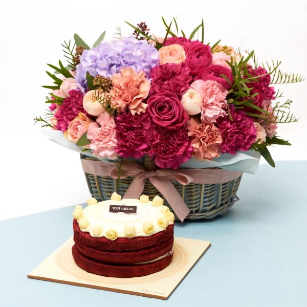 뚜레쥬르 레드벨벳케익+프랑디 카네이션꽃바구니 꽃배달 어버이날 선물