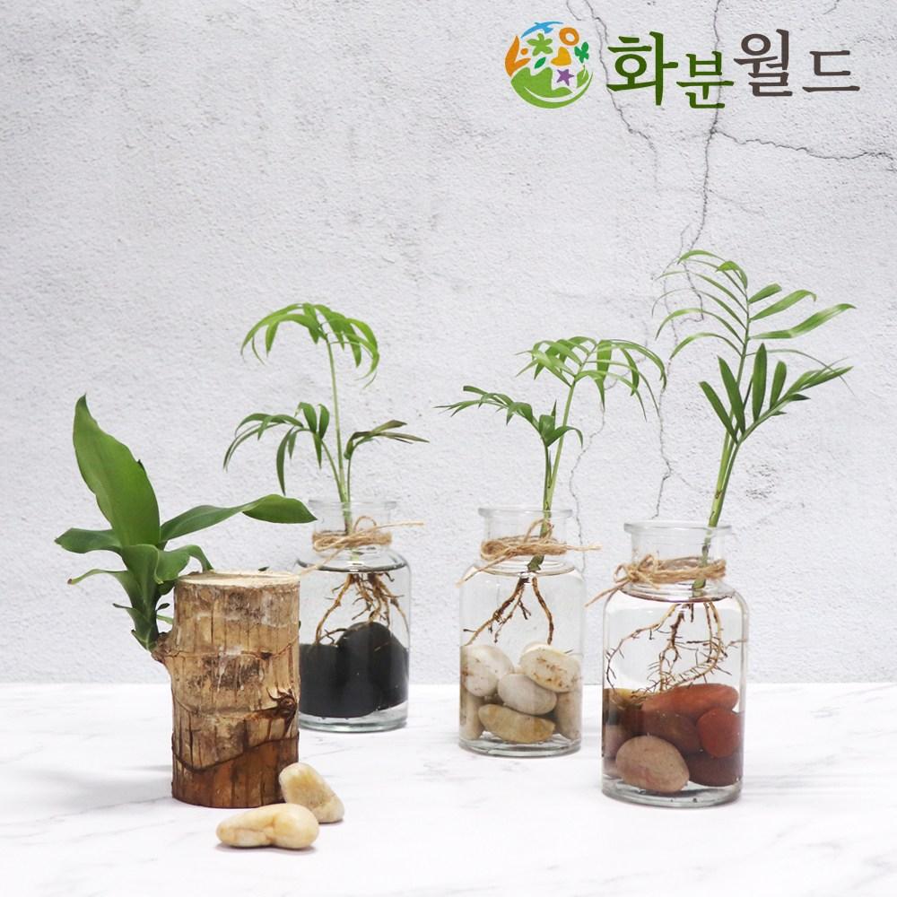 우화석(강자갈) 소포장 흑자갈 백자갈 정원자갈, 우화석(검정)(1kg)