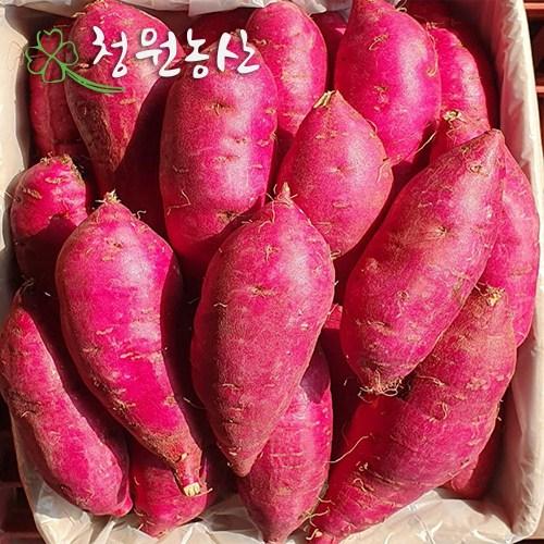 청원농산 햇밤 꿀고구마 (특/특상) 3kg 5kg 10kg, 3kg  x 1box