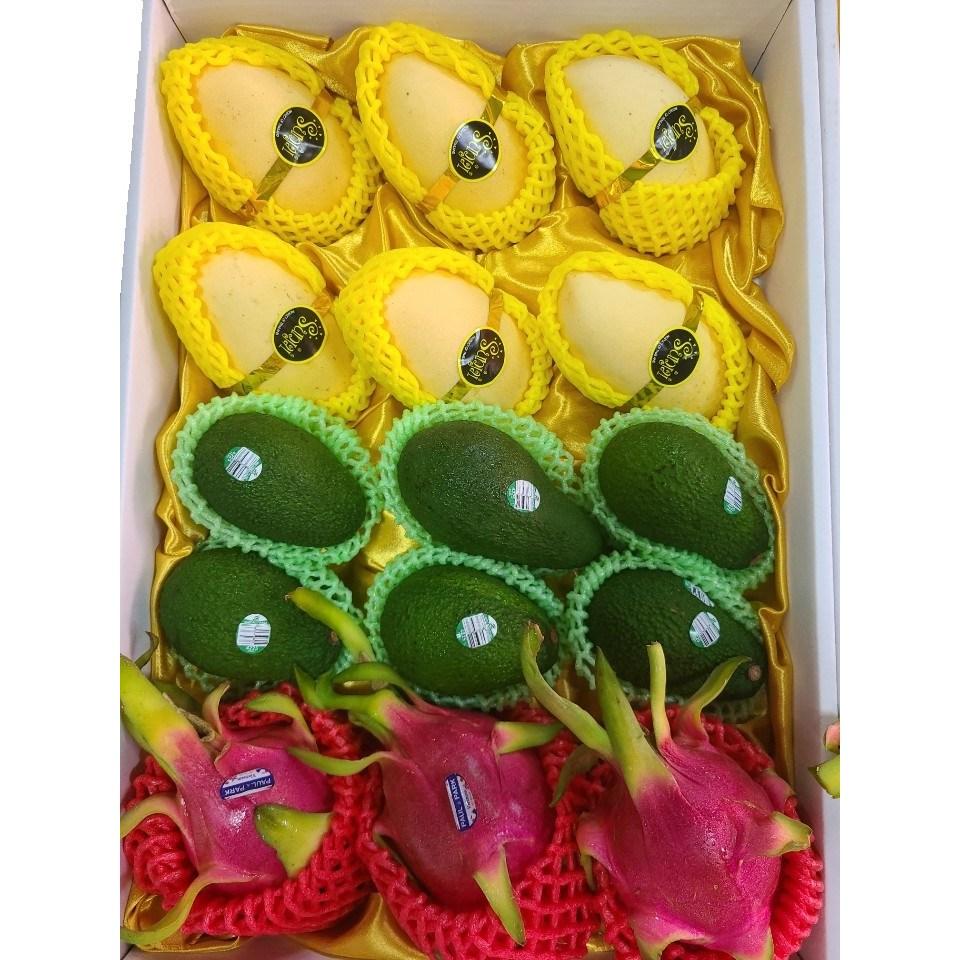 차칸유통 열대과일 선물세트-망고 아보카도 용과로 혼합 구성된 선물세트, 열대과일 선물세트 A구성 1 Box