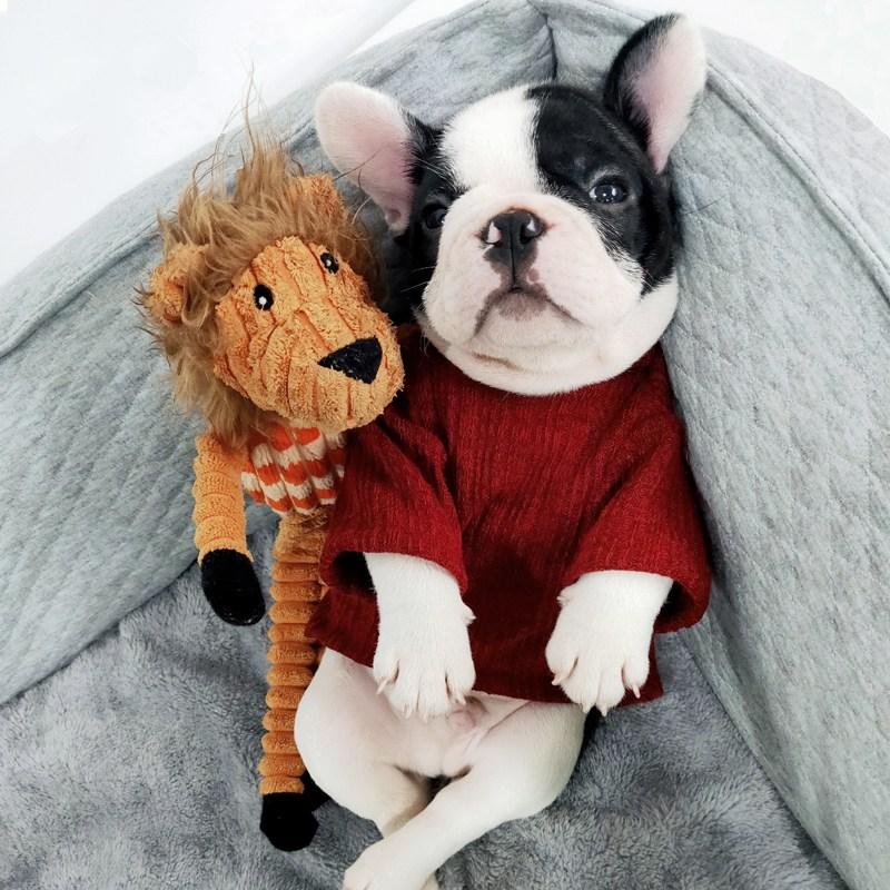 강아지옷 1개 글로벌 애완동물 패션 애견옷 푸들 프렌치불독 옷 고양이용 가을겨울옷 털옷, C08-강아지 3XL