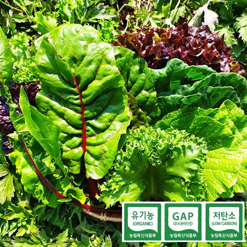 당일수확 친환경 GAP 유기농 모듬 쌈채소 600g 1kg, 유기농 쌈채소 600g