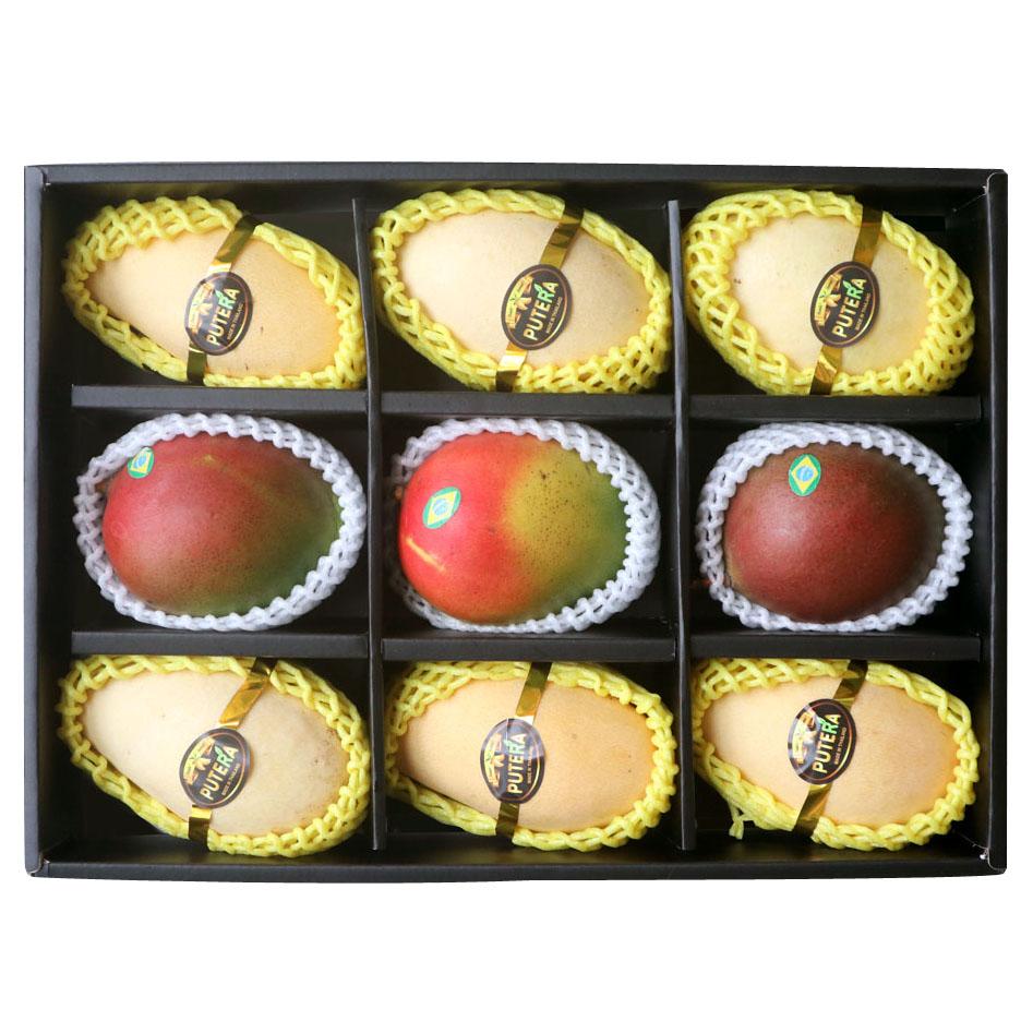 애플망고 선물세트 4kg / 6과 /9과 12과/태국망고혼합, 4. 혼합9과 (애플3 태국6)  3kg 선물세트