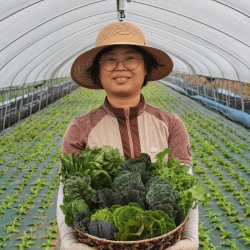 [희망농장] 당일수확 샐러드야채 모듬쌈 쌈채소 1kg (10종 구성)