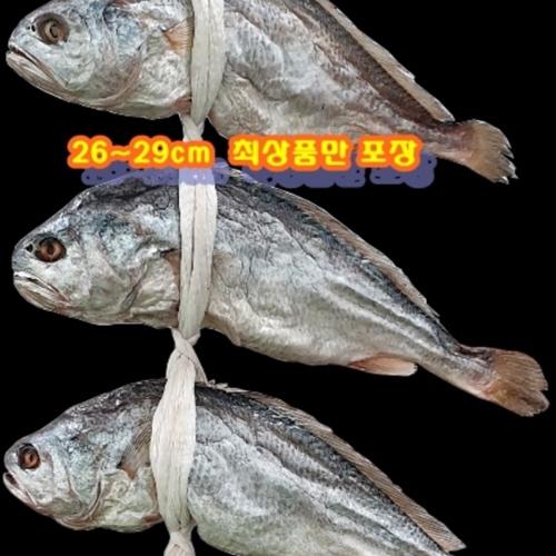 프리미엄 국산 영광 보리굴비(대) 선물세트+선물용보자기, (26~29cm) 5마리
