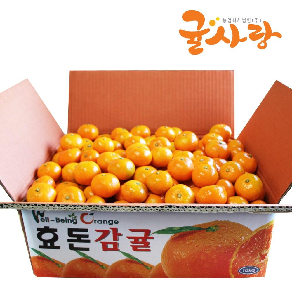 귤사랑 노지감귤 감귤 1박스 05 제주 노지감귤 10kg 소과2S