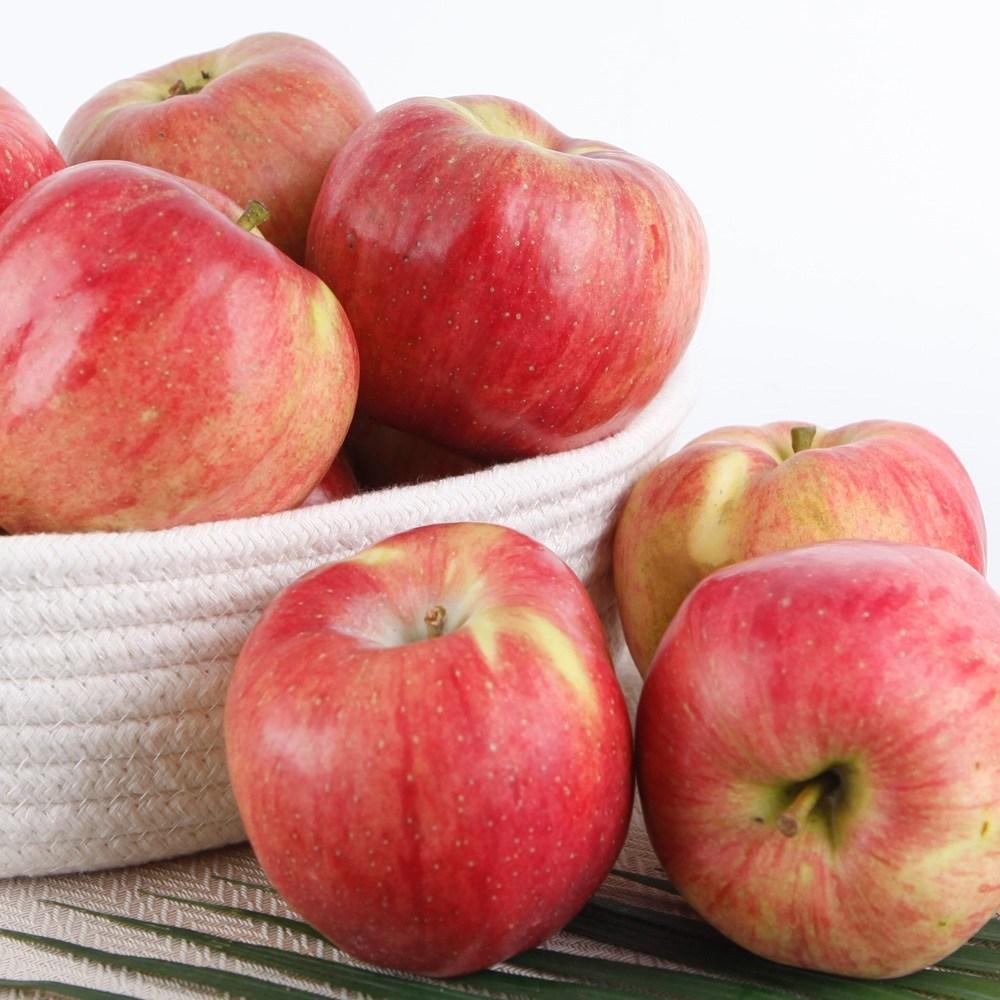 햇홍로 사과 아삭하고 달콤한 홍로, 1box, 혼합과(사과/배)-10과