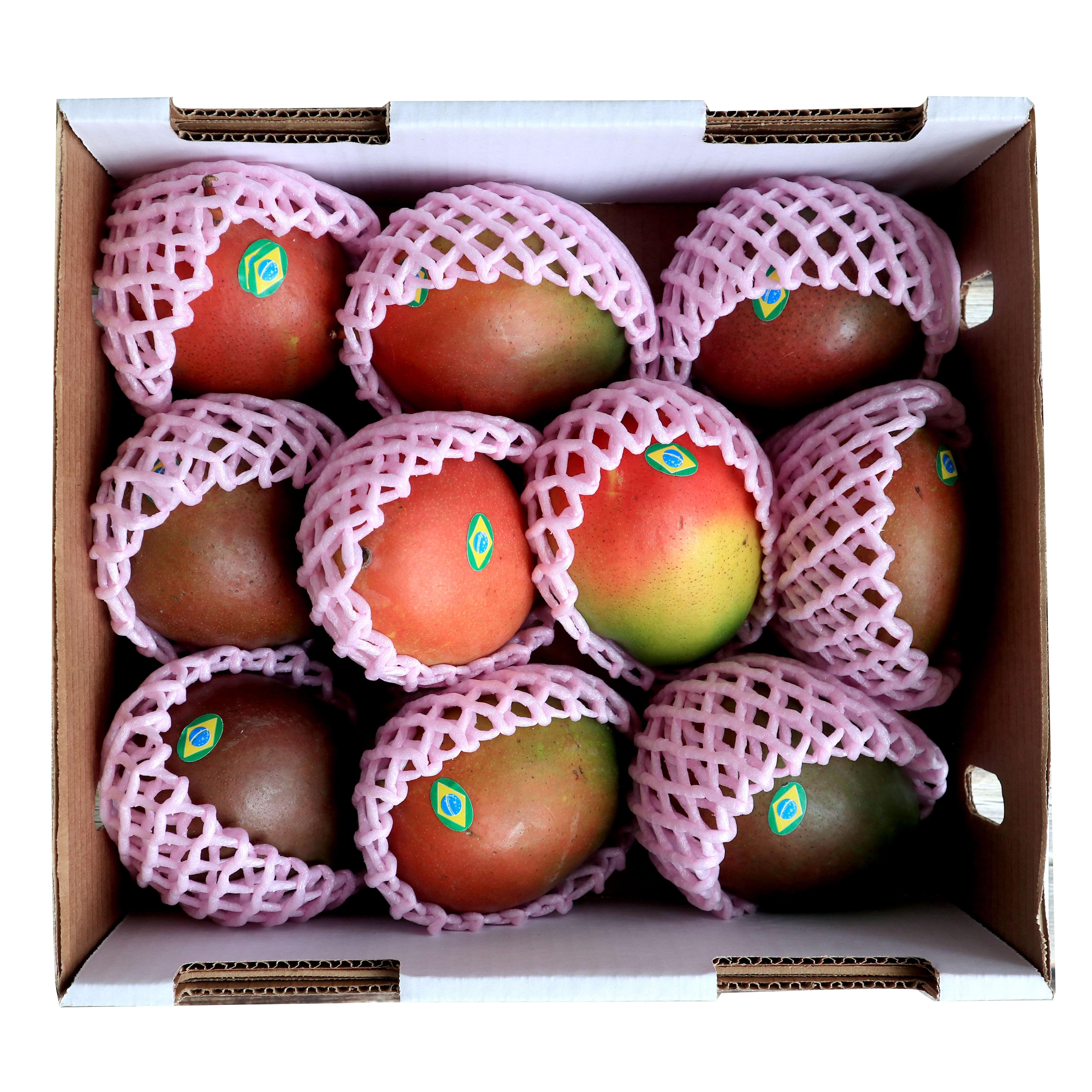 애플망고 선물세트 4kg / 6과 /9과 12과/태국망고혼합, 1. 브라질 애플망고 4kg 8~12과