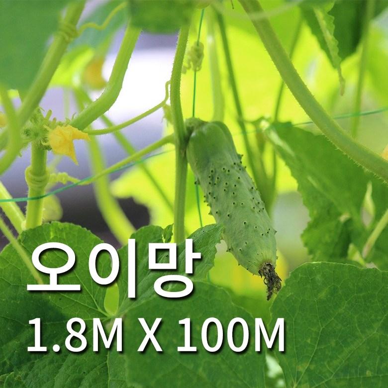 식물의집 오이망 오이 1.8m X 100m (POP 1601272275)
