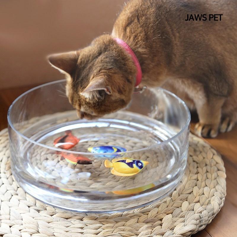 죠스펫 고양이물그릇 투명 대형 유리수반 대형유리그릇 외 고양이용품 장난감, 투명유리수반, 1개