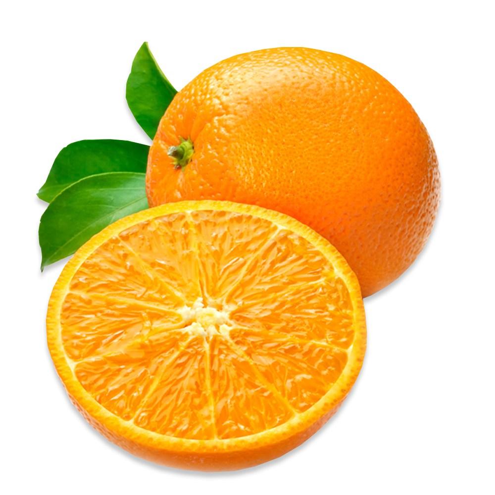 네이블 오렌지, 20개입 (190g내외)