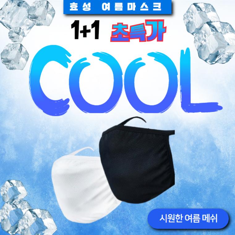 빨아쓰는 효성 아스킨 여름 냉장고마스크 메쉬2겹 1+1 성인 특가세일, 추가구성-필터20매