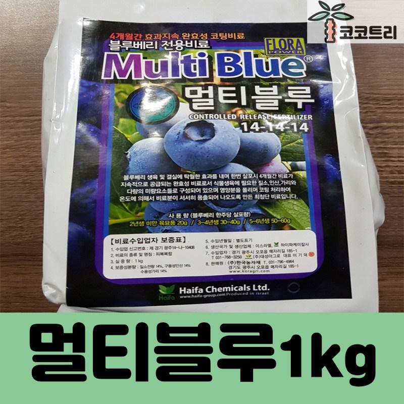 [코코트리] 블루베리묘목, 1개, 멀티블루 (1kg)