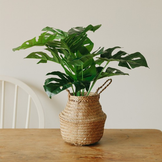 아크리에 몬스테라 플랜테리어 조화나무-실내인테리어 조화식물, 상세설명 참조, 조화나무 단품