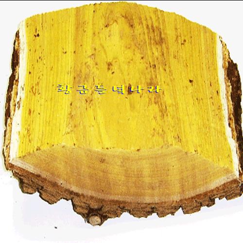 옻나무 엄나무 옻껍질 옻나무효능 해동피 참옻나무 황금옻닭 옻닭 참옻껍질 옻나무껍질 국산옻나무 옻나무티백 옻나무진액 참옻나무껍질 국산참옻나무 황금들녘나라, 1개, 500g x (제품정보8)고목 껍질부위 참옻나무(특)