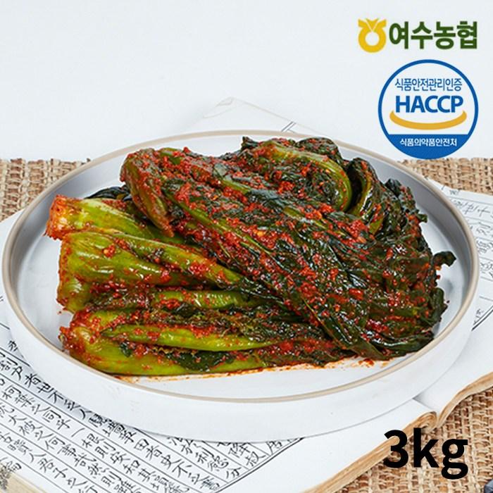 [여수농협] 여수돌산 갓김치 3kg (국내산 100%), 단품