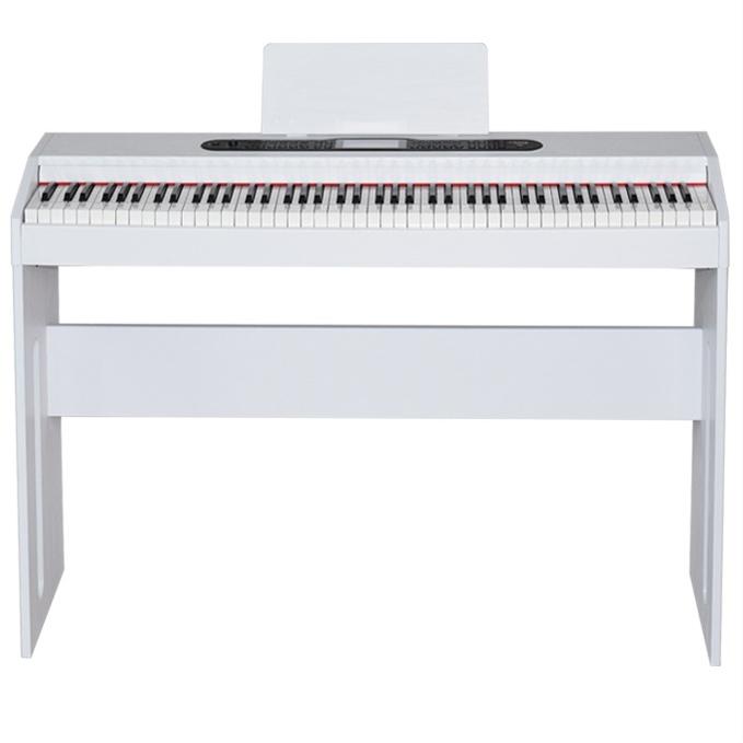 비바체전자피아노 디지털피아노88건반 전자피아노VS-880PRO