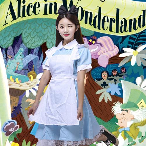 반티고고 체육대회 반티 코스프레 졸업사진 특이한 이상한 나라의 앨리스