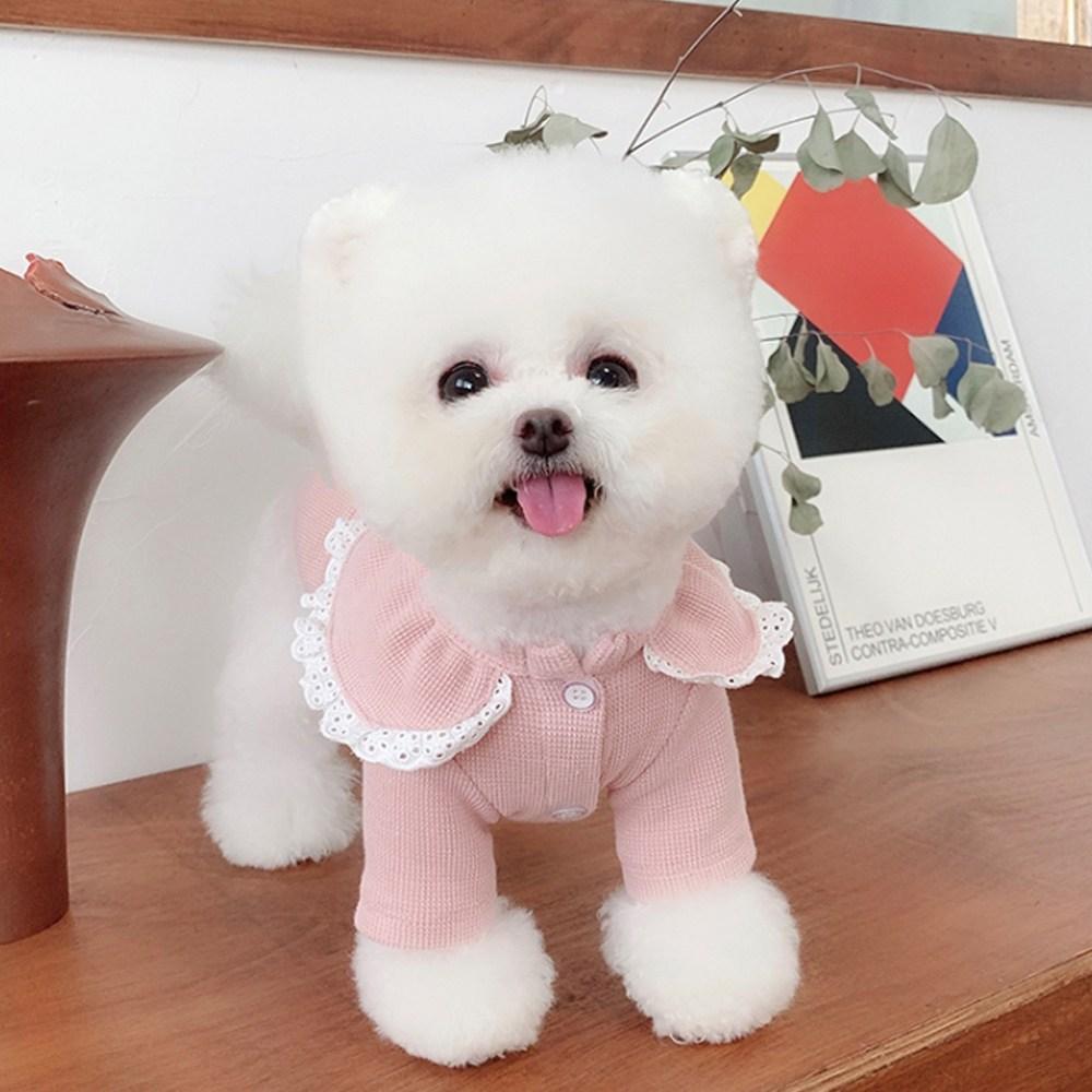 베이비도그 DT053 쁘띠프릴티, 핑크