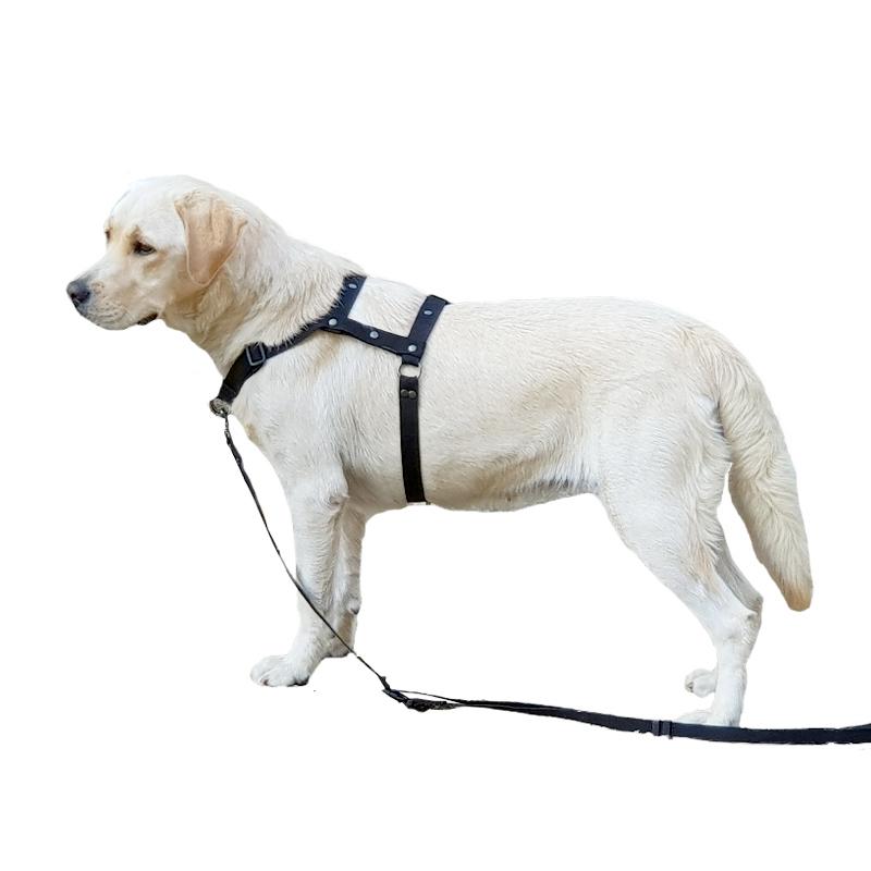 [패피퍼피] 대형견 중형견 하네스 강아지 앞고리 앞섬방지 이지워크 가슴줄 국산 H형 L형 몸줄, 아이보리+옐로우