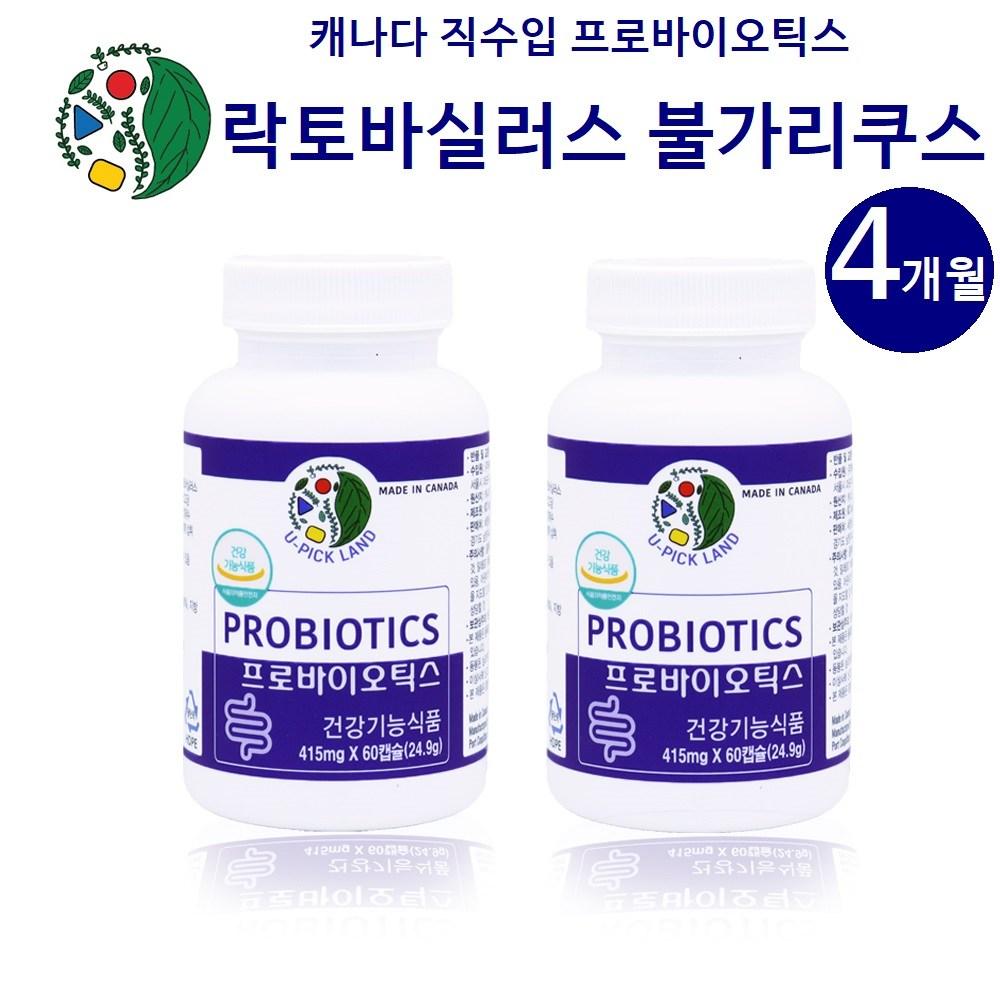 캐나다 불가리쿠스유산균 락토바실러스 불가리쿠스 프로바이오틱스 모유유산균 프롤린 가세리 17종 생유산균 식물성캡슐 프락토올리고당 메치니코프 복합균주 생존 효능, 2개, 60캡슐