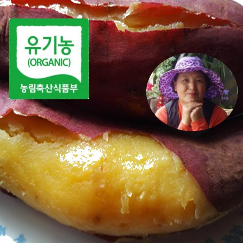KBS 한국인의밥상방송 481회 유기농 찰 밤고구마 특상품. 3.5kg. 5kg 10kg, 1box, 유기농 꼬맹이 5kg