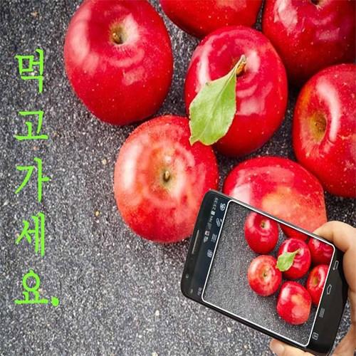 2020년 햇홍로 사과 4kg 할인행사 빨갛게 빨갛게. 물든 경북 청송사과, 1박스, 01. 청송사과 가정용흠과 4kg (소과) 박스포함무게