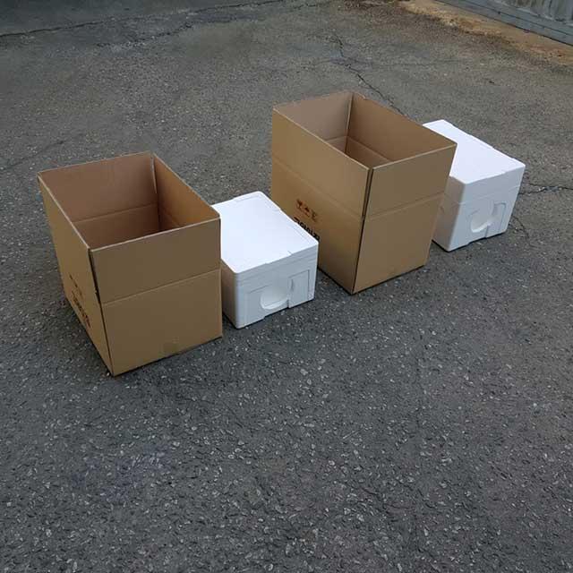 우드플러스 길고양이겨울집 스치로폼박스형 급식소 하우스 숨숨집, 박스스치로폼형