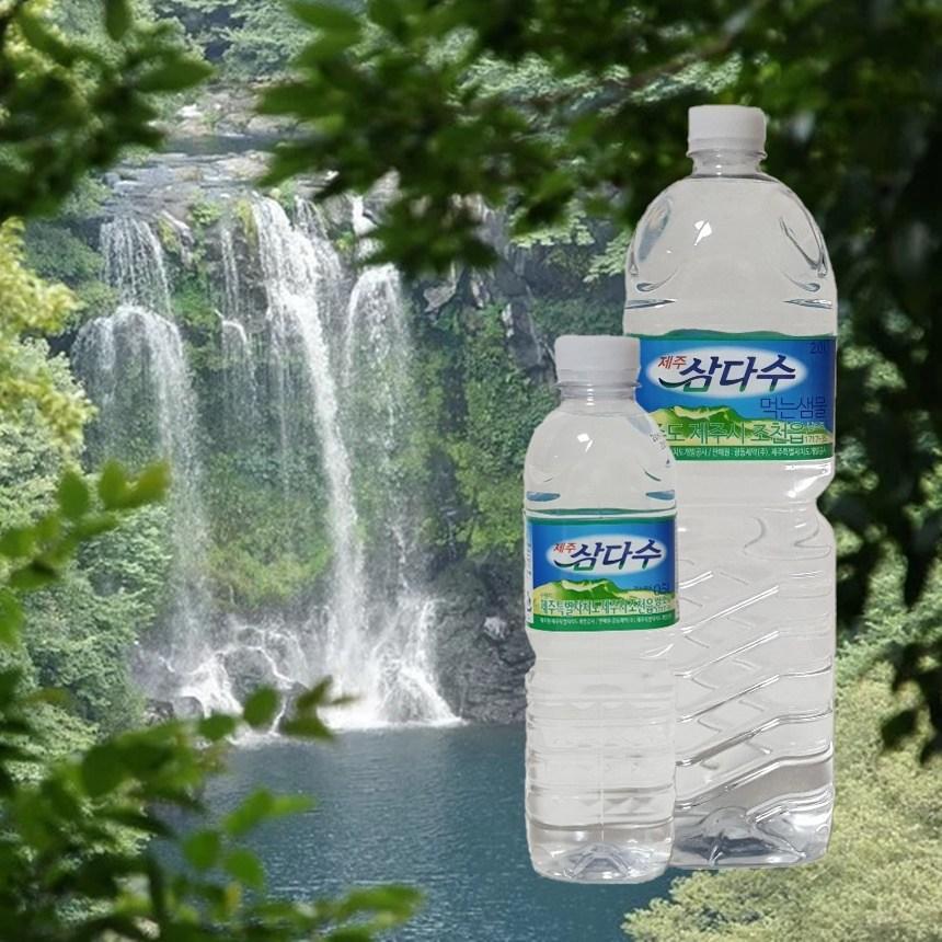 제주삼다수 2L 500ml 안전한 천연 미네랄 워터 물 생수 먹는샘물 암반수 좋은물, 6병
