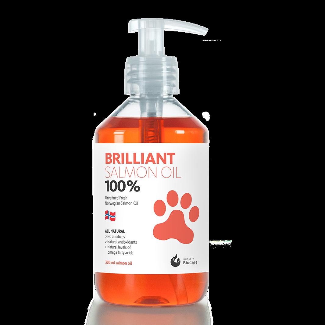 브릴리언트 연어오일300ml (사은품 증정) 아이테크 (오메가3 6) (강아지 고양이) 영양제, 1병