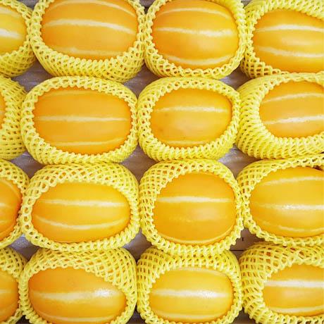 B. 달달하네~ 산지직송 성주 고당도 꿀 참외, 1박스, 01. 참외.가정용 2kg / 크기랜덤