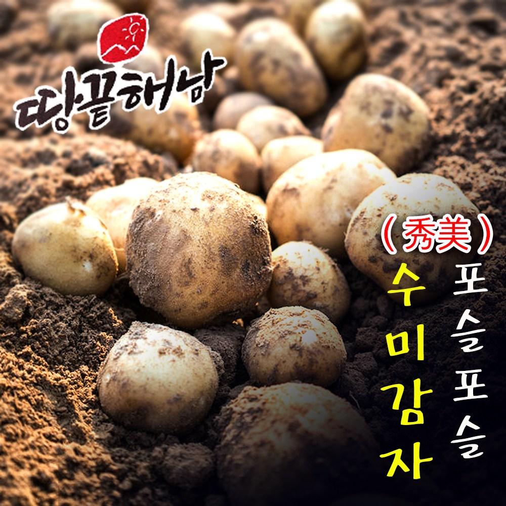 [청년농부]황토 무농약 햇 수미감자 3kg 5kg 10kg 보슬보슬 포근포근 햇감자 산지직송, 수미감자 통구이용 (50g~80g) 3kg