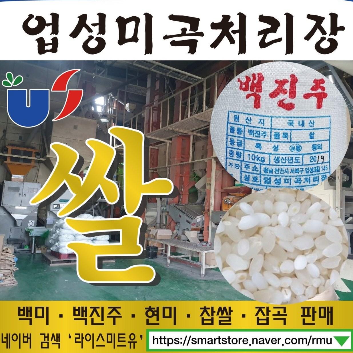 20년산 햅쌀 백진주쌀 10kg 백진주현미증정 500g, 1개, 10키로