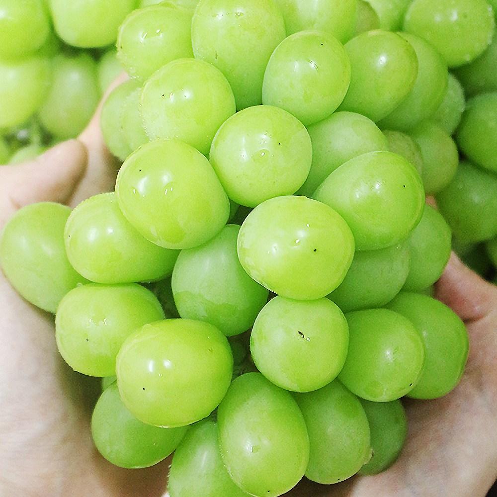 김천샤인머스켓 제철 과일 씨없는청포도 포도 2kg, 1박스