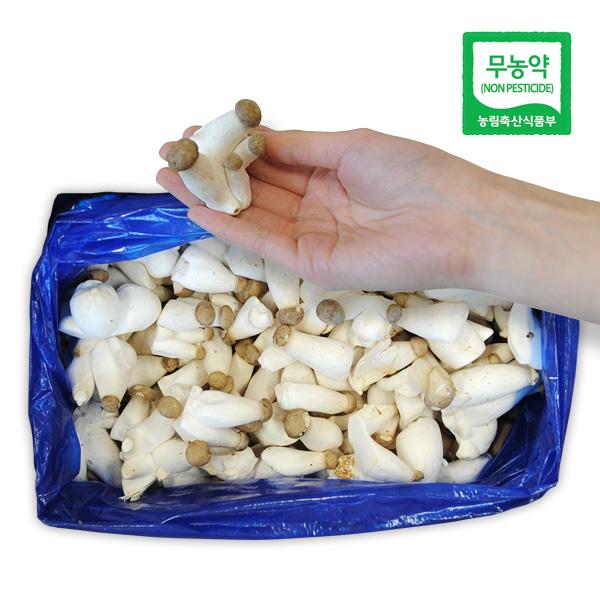 [무농약] 깔끔하게 손질된 새송이버섯 1kg 2kg, 1박스, 솎음버섯 2kg (볶음용)