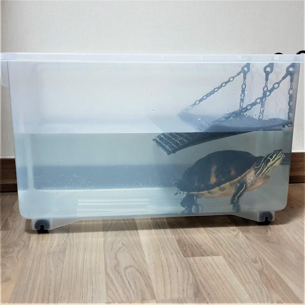 꼬북랜드 (일반형수조) 거북이 플라스틱 수조 대형어항 플라스틱어항 사육장, 1개