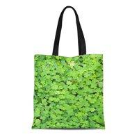 kdagr 캔버스 토트백 클로버 베어 클로버 녹지 식물학 셀틱 내구성 재사용 가능한 쇼핑 어깨 잡화 봉지