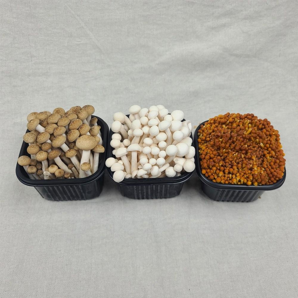 [산들따옴] 국내산 쫄깃한 만가닥 2종+황금송이버섯 1종, 1개