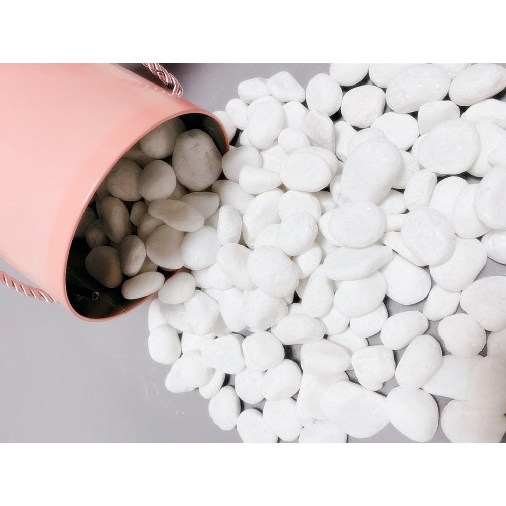 리투나 백자갈 흰색돌 3kg 화분돌 야외 정원 마당 인테리어 수족관 어항 화분 돌맹이 베란다 화단 데코 원예용 조경 하얀자갈 소포장, 2~3cm전후