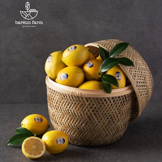 바른과일 레몬 22과 개당 100g내외, 1box, 레몬 개당 100g내외 12과