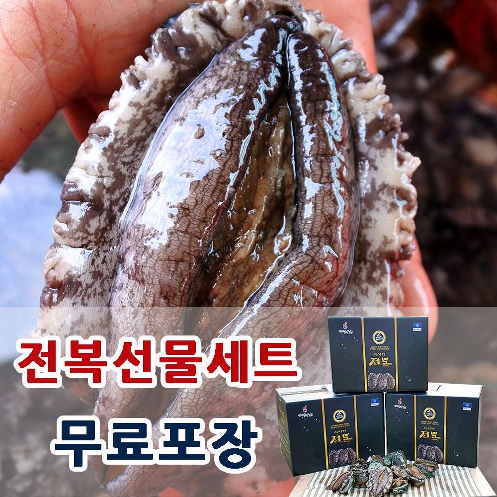 싱싱해 완도 활 전복 1kg 특대 선물세트, 1box, 4.  1kg(중대)12-13미