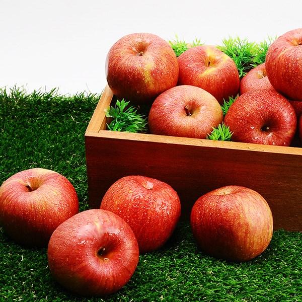 빨간 햇사과 홍로사과 가정용/정품 선택, 2.5kg 가정용