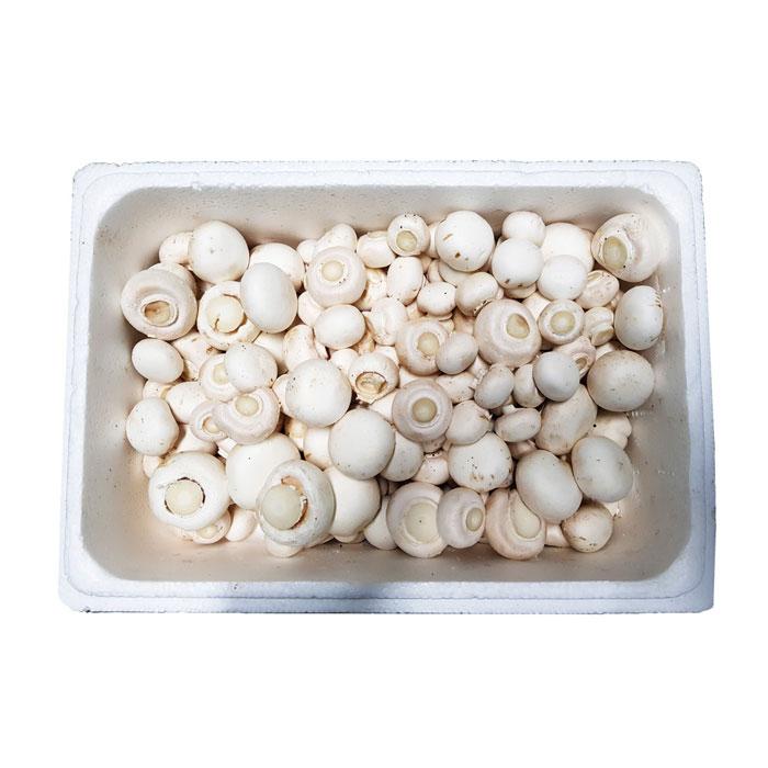 산지직송 무농약 오서산 양송이 버섯 1kg 흰색 파지 GAP인증