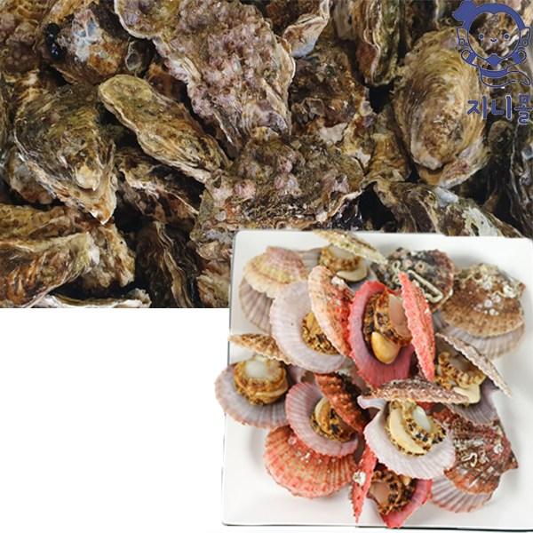 지니몰 자연산 통영 맛있는 비단 가리비 + 제철 석화 굴 세트, 가리비 2Kg + 석화 3Kg