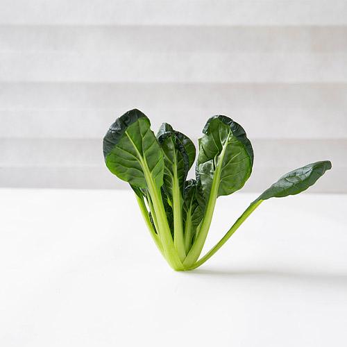 비타민 채소 300g 다채 비타민 샐러드야채, 비타민채소 300g