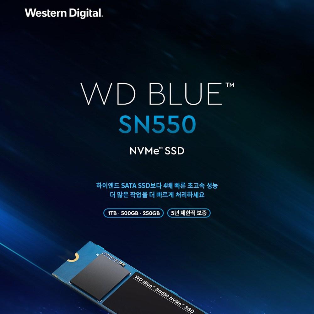 Western Digital WD Blue SN550 M.2 2280 NVME방식 SSD, 500GB