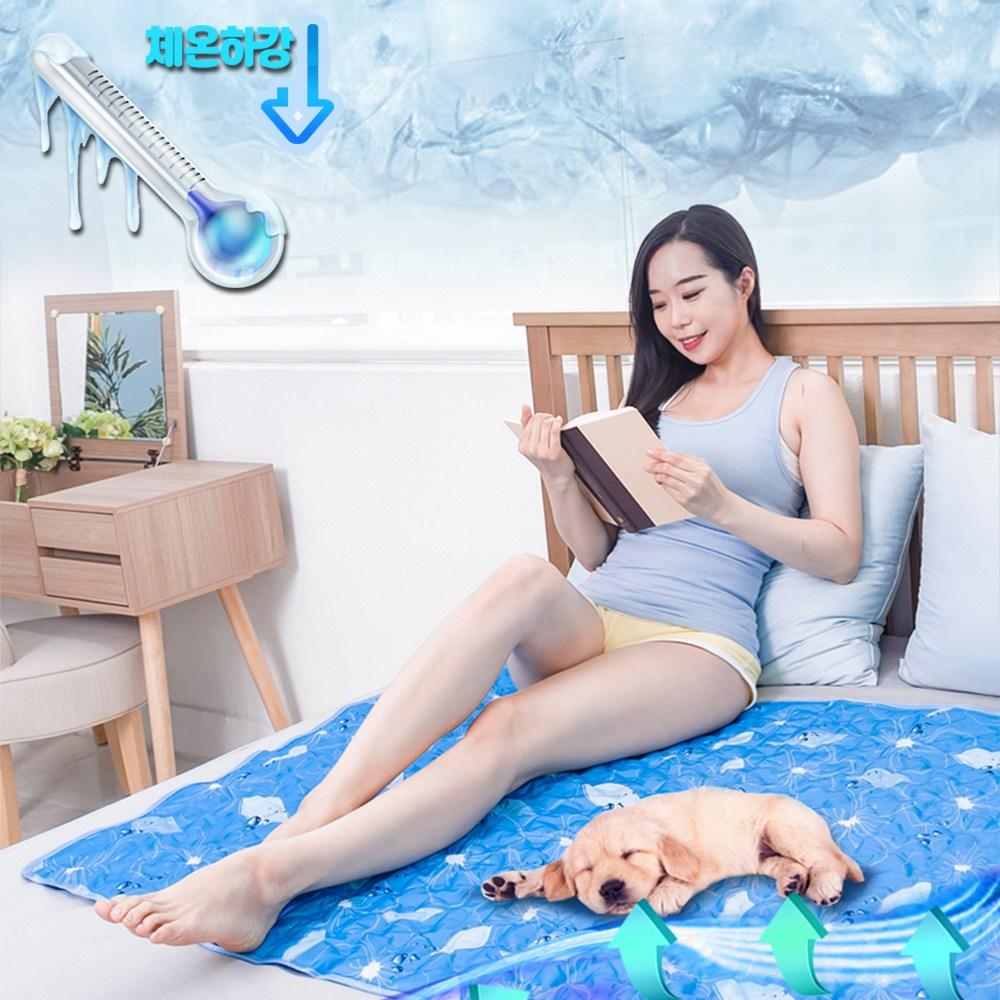 에스제이 국산 LG 정품 쿨젤 아이스 얼음 냉 쿨 매트 강아지 고양이 여름 쿨매트, 아이스버블 특대형더블쿨매트세트(베개2 매트1)