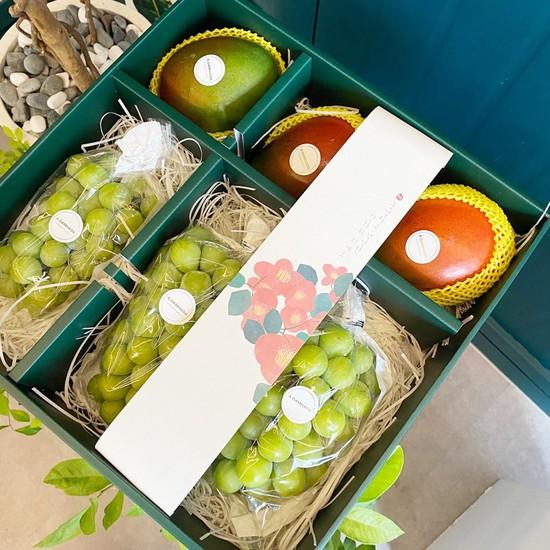 [프리미엄]과일선물세트 1호 5kg내외애플망고3과+샤인머스켓3송이, 없음