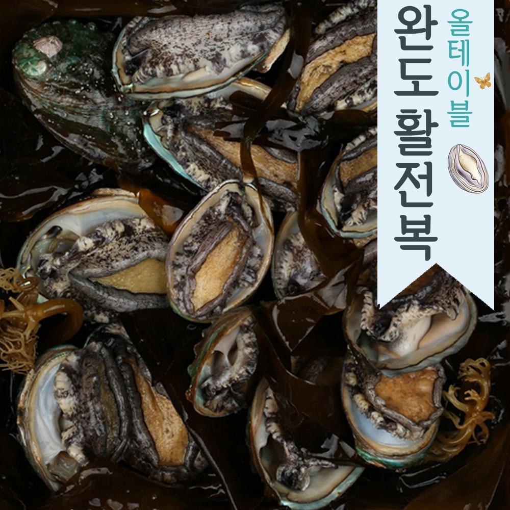 마이다이닝 산지직송 자연산 완도 활 전복 왕특대 꼬마 1kg 선물세트, 1.꼬마37-40미(1kg)